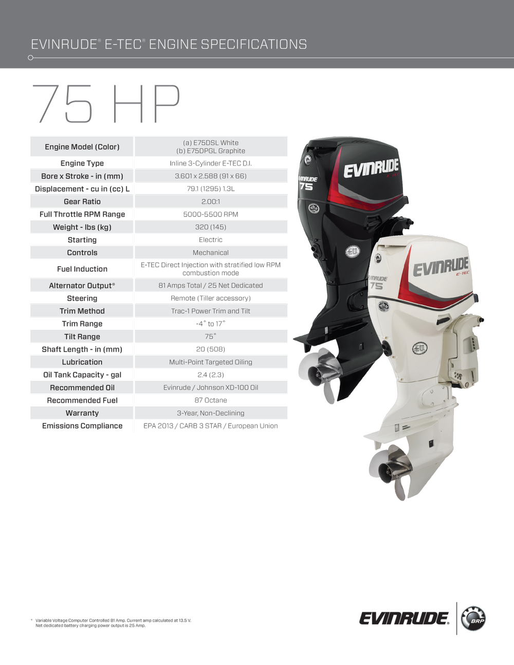 View large image: 2018 Evinrude E75DSL